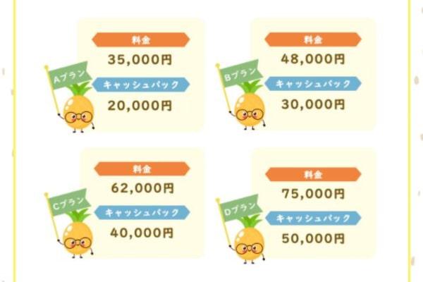 ぱいなっぷるのキャッシュバック金額表